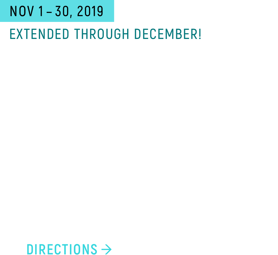 Sketches on Glass. Solo show by Armelle Le Roux, through December 2019. FM Gallery, 483 25th Street Oakland, California. Come to First Friday and the Saturday after!